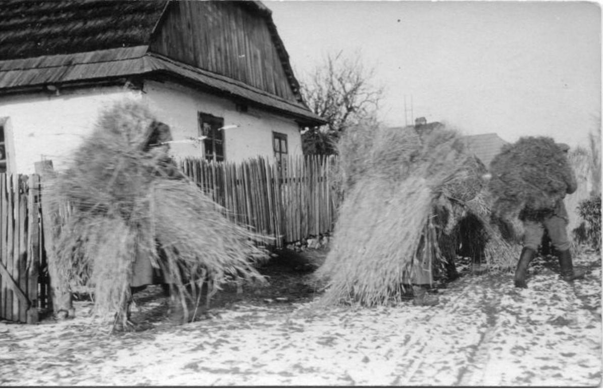 1915. Фуражировка