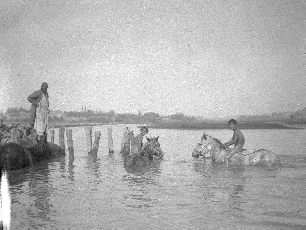 Мальчики купают лошадей