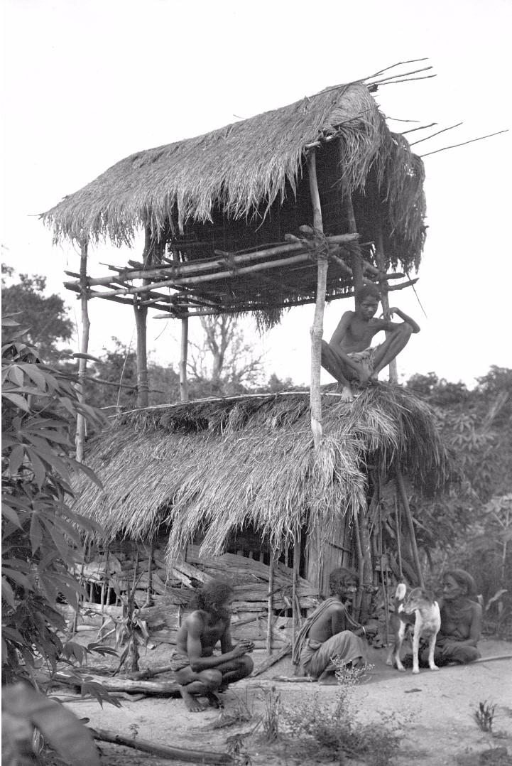359. Мадугалла. Мужчины в сторожевой хижине для наблюдения за полем