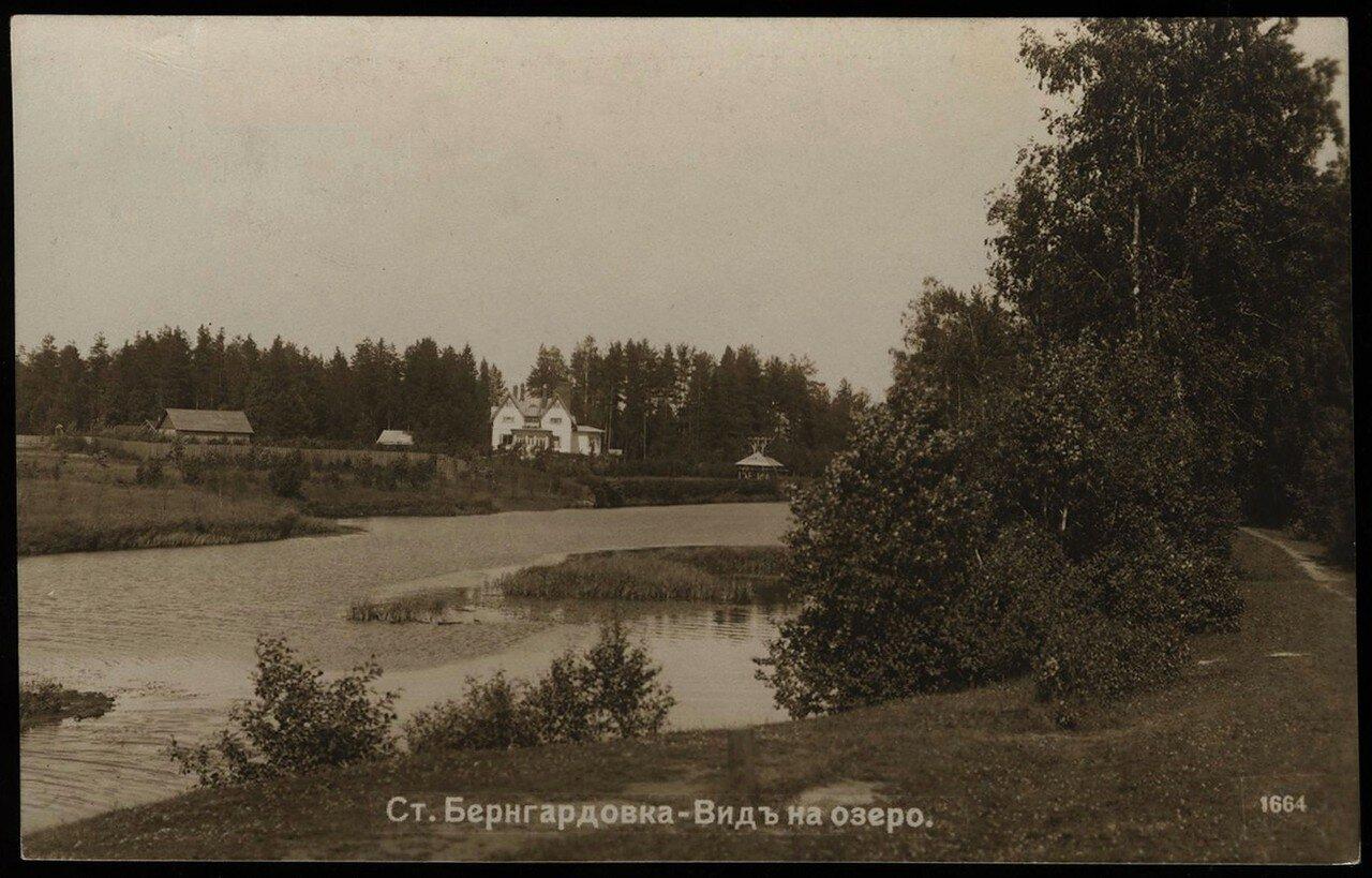 Бернгардовка. Школьное озеро