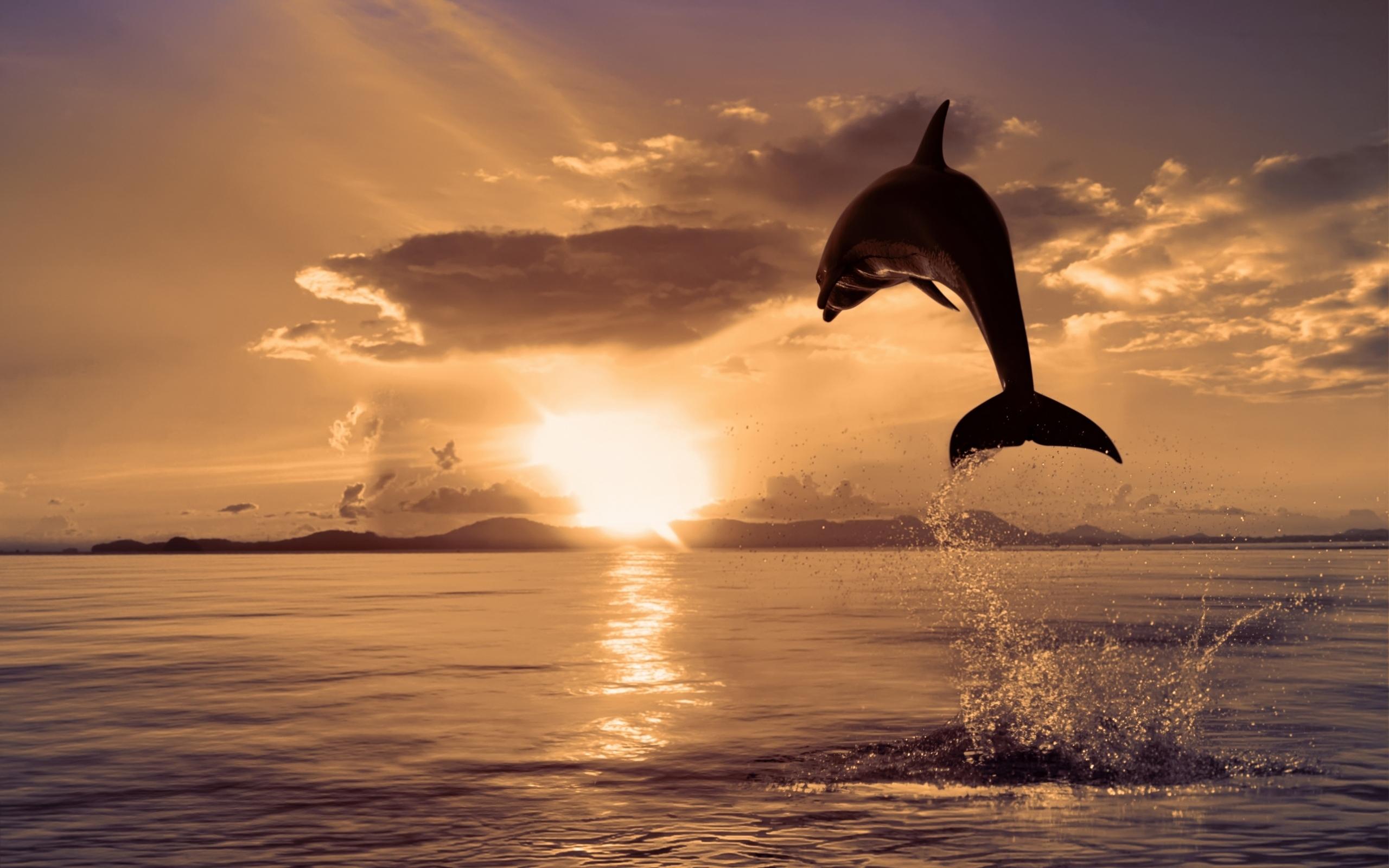 Международный день Черного моря!
