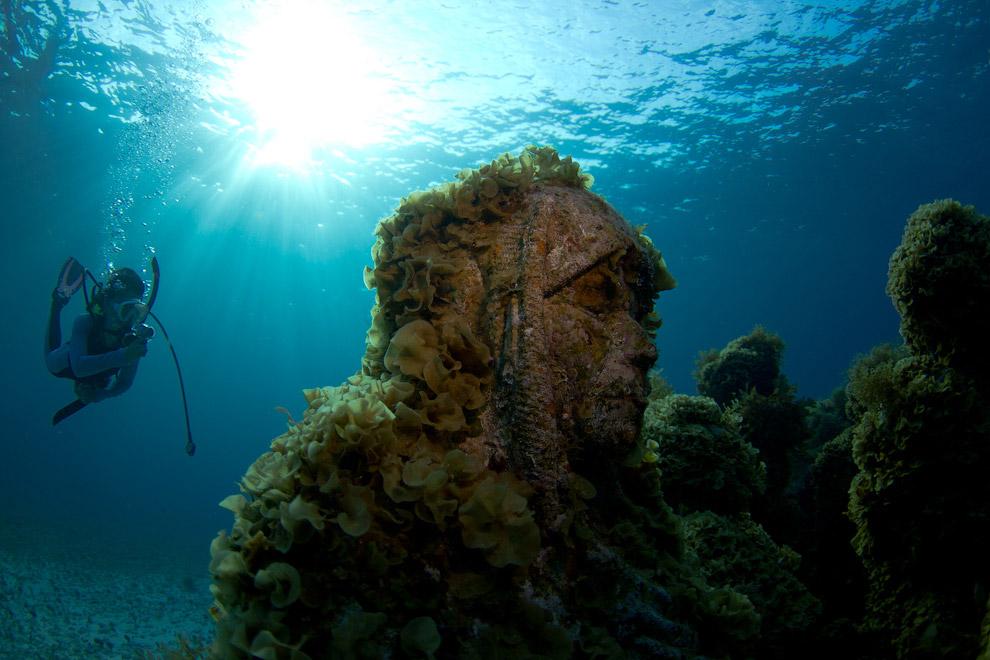 Композиция «Мечтающий коллекционер». Был установлена в 2009 году на глубине 8 метров. Человек