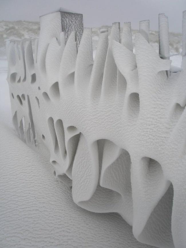 © YolandaChow85/reddit      12. После небольшого снежка выглянуло солнце исоздало