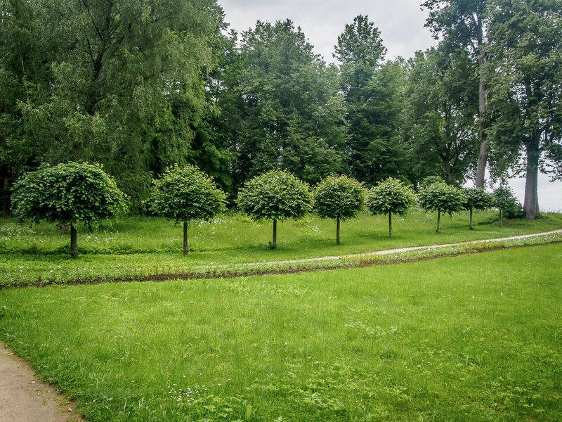 По другую сторону расположен парк