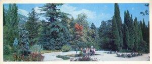 Крым. Ялта. Никитский ботанический сад. Розарий Верхнего парка. Фото В. Крымчака.jpg