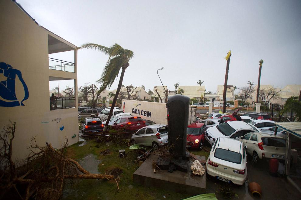 3. Пальмы не выдержали напора ветра. (Фото Lionel Chamoiseau):