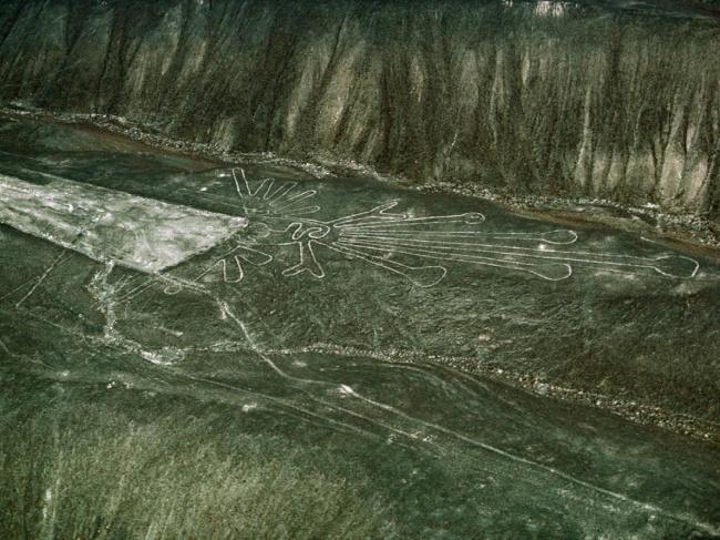 © nationalgeographic     Эти невероятные геоглифы были найдены наплато Наска (Nasca) вю