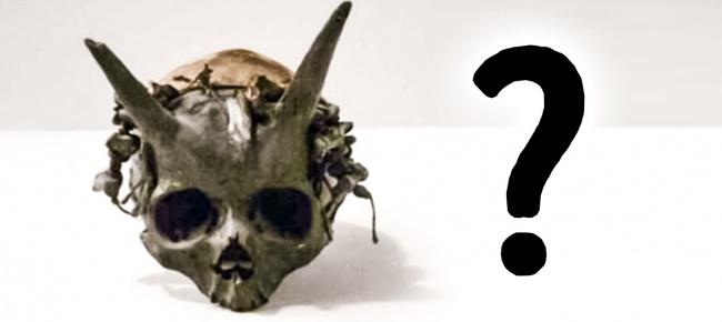 © desciclopedia     Этот череп был найден в1880-х годах вкургане, находящемся натеррит