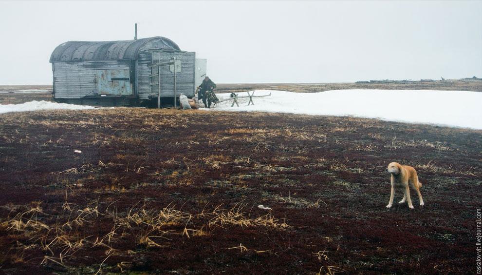 Это был один из районов на Крайнем Севере России, май 2012 года.