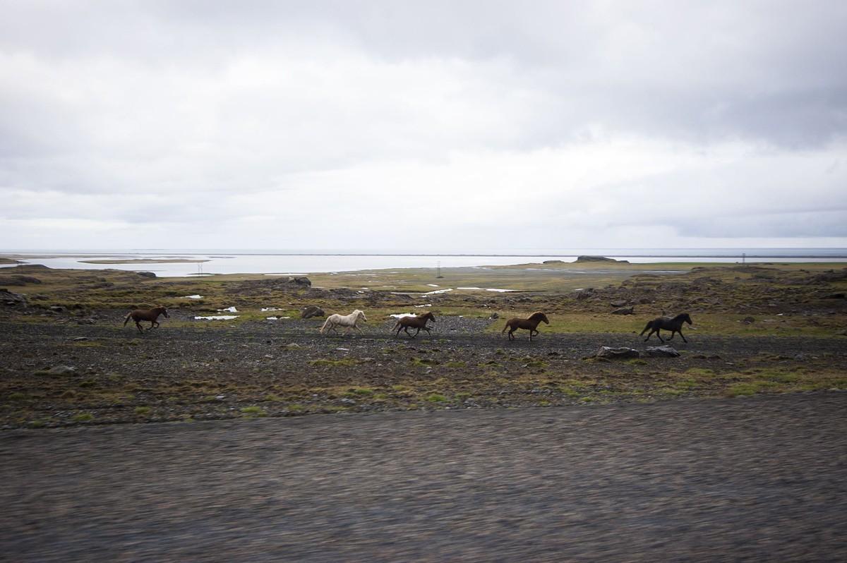 автопутешествие Исландия