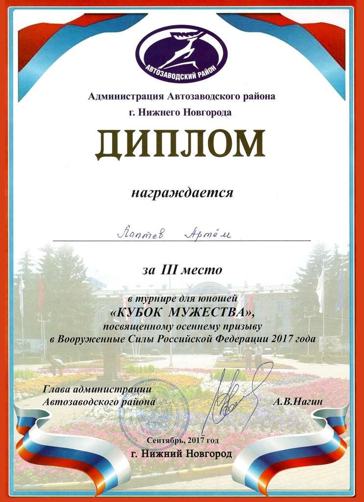 АРТЕМ ЛАПТЕВ.jpg