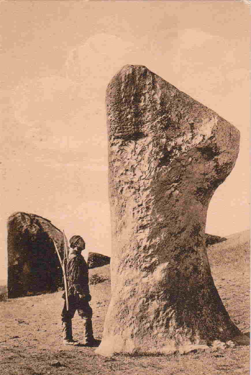 Окрестности города. Далмыжский курган. Камень Балобал