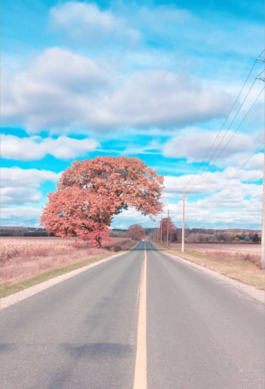 Подборка интересных и веселых картинок 09.11.17