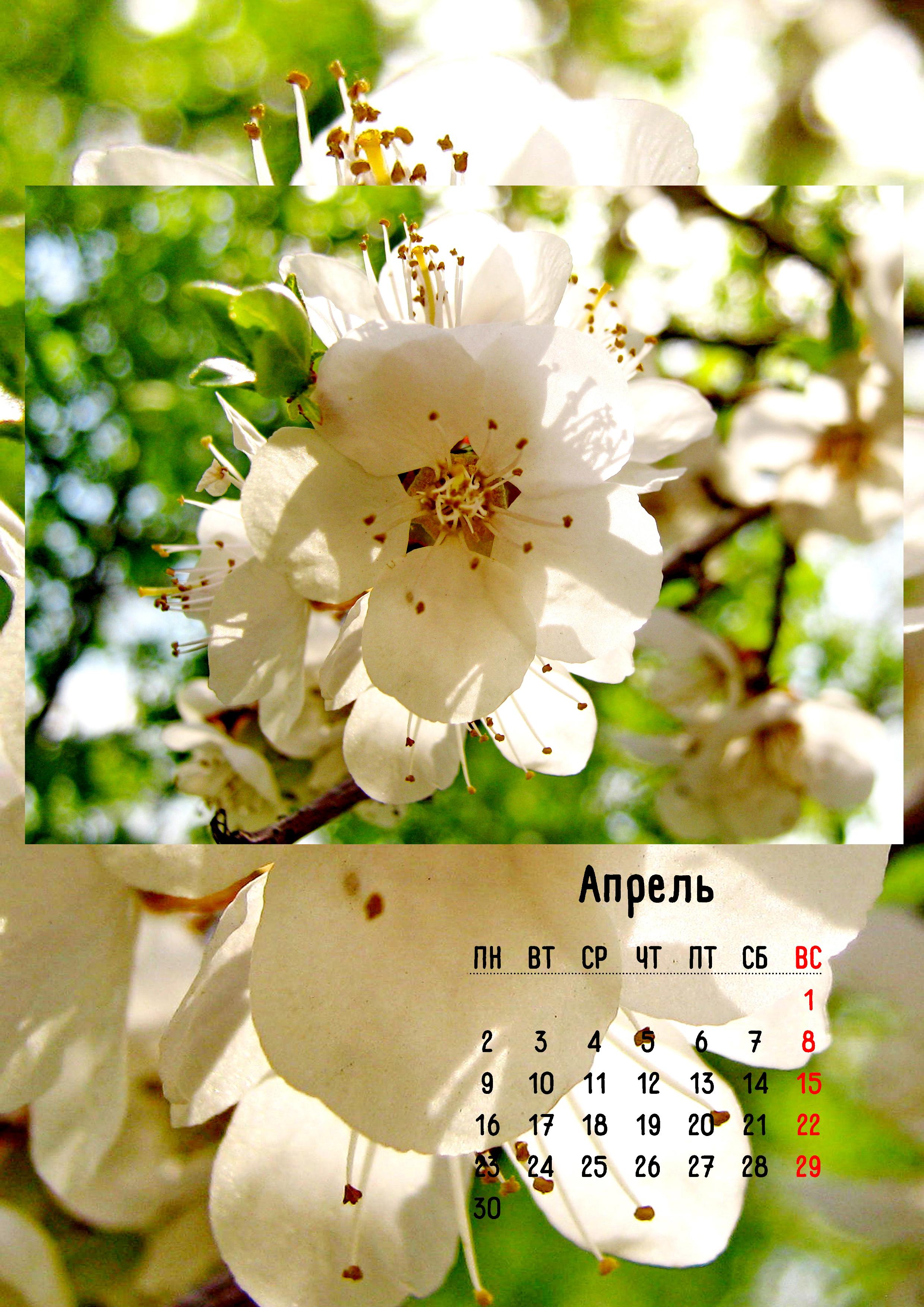5. Календарь апрель.jpg