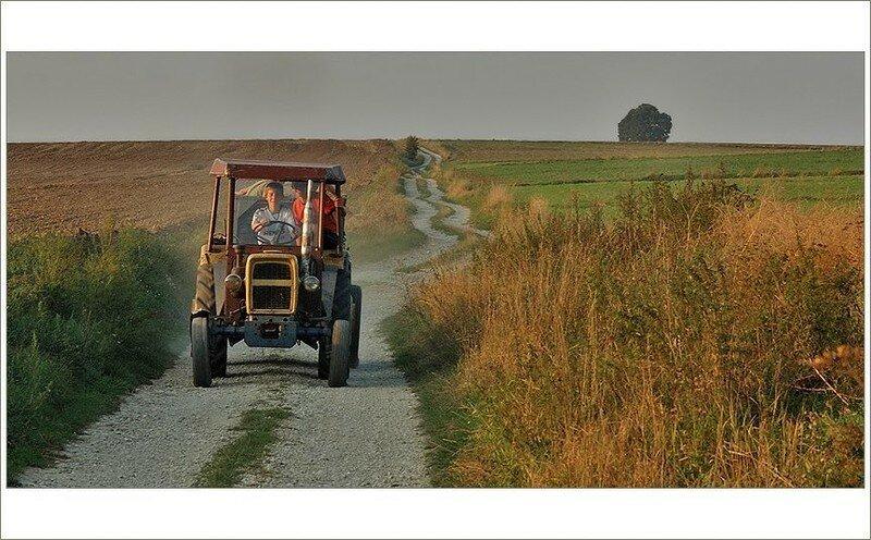 0 17dab6 a97d19bb XL - Менуэт Советскому трактору