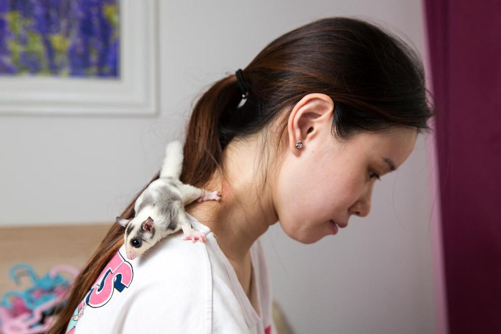 10. Ушастый новокаледонский геккон. Они способны менять окраску в зависимости от температуры, влажно