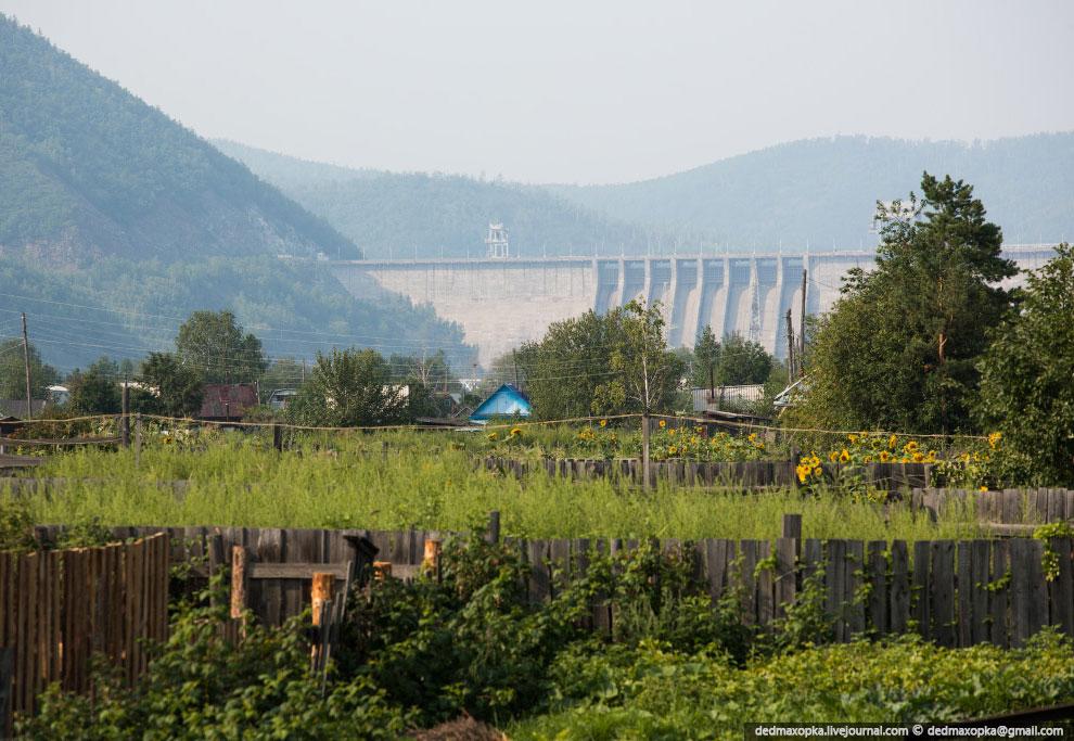 Еще одна забавная особенность — целая колония сусликов живет на территории Зейской ГЭС: