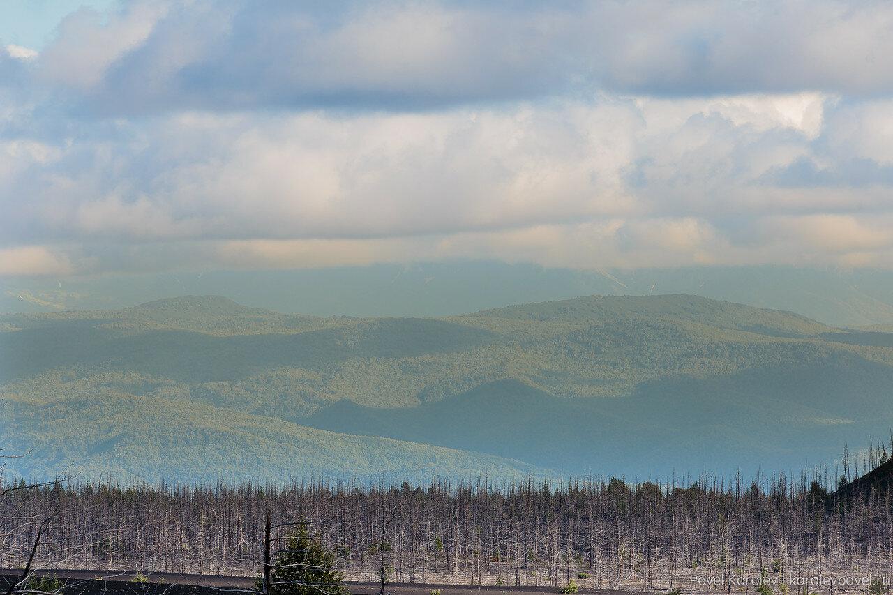 Kamchatka-168.jpg