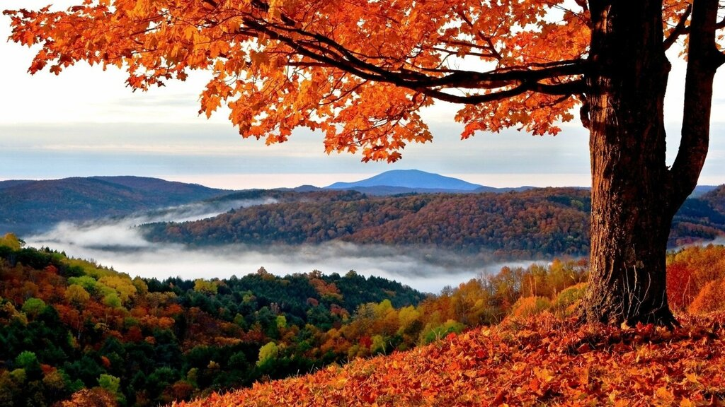Autumn-Pics-Wallpapers-003.jpg