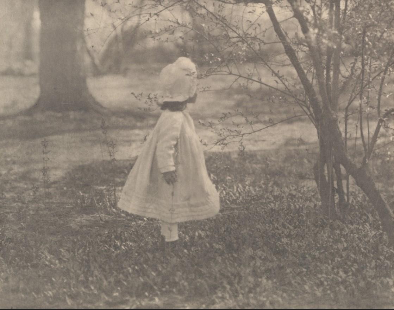 1901. Кити Стиглиц, Центральный парк, Нью-Йорк ы