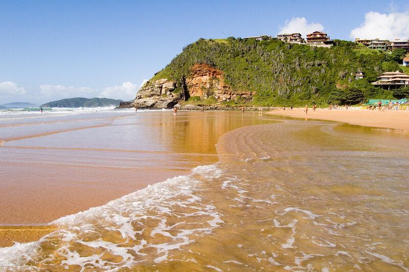 Джунгли Амазонии, золото пляжей Рио-де-Жанейро, тонкий аромат кофе, грохот могучих водопадов - всё это...