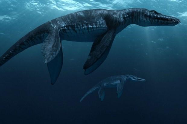 Монстры подводного мира: 10 доисторических морских чудовищ, терроризировавших Землю