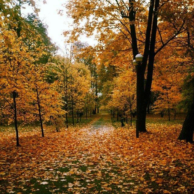 Барановичи.Осень