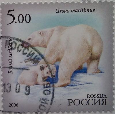 2006 фаунаЯкутии белый медведь 5