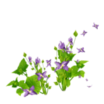 «Flowers Foreve» 0_8a42e_20e4a249_S