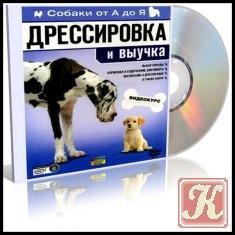 Собаки от А до Я: Дрессировка и выучка
