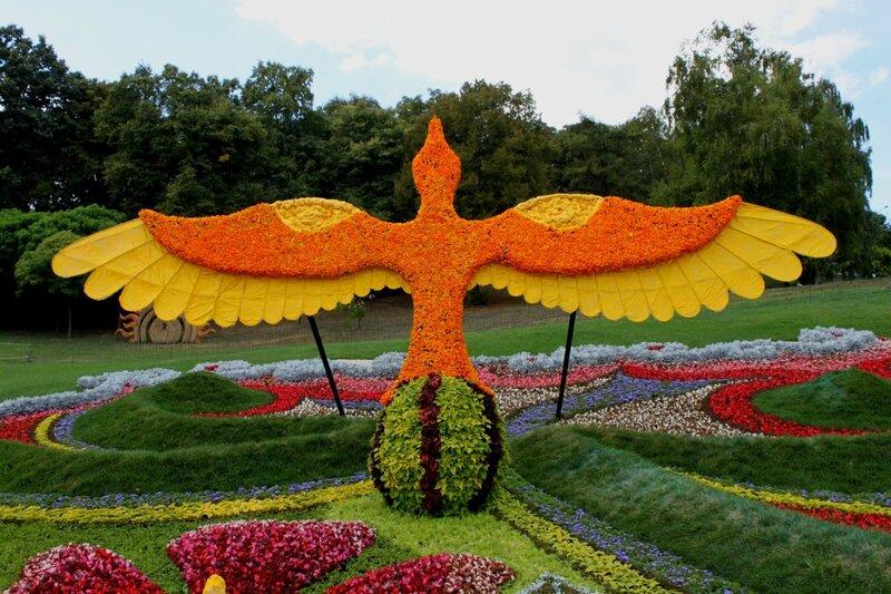 """Выставка цветов """"Цветочный оберег"""" ко Дню Незалежности 2015"""