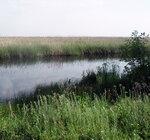 У каналов реки Бейсуг