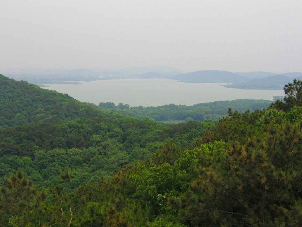 Вид с горы Мошань, Ухань