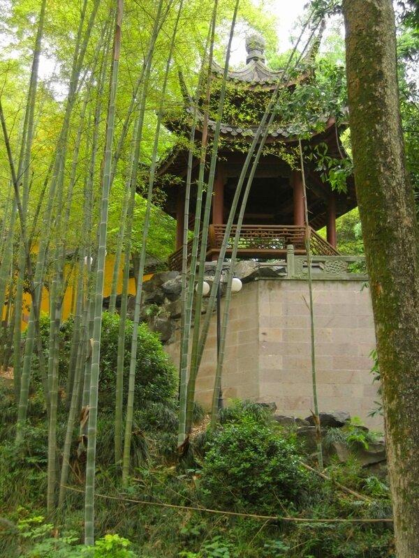 Беседка и бамбуки