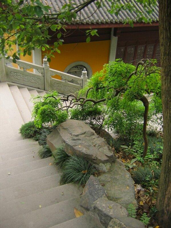 Карликовое деревце, Монастырь Линъиньсы, Ханчжоу