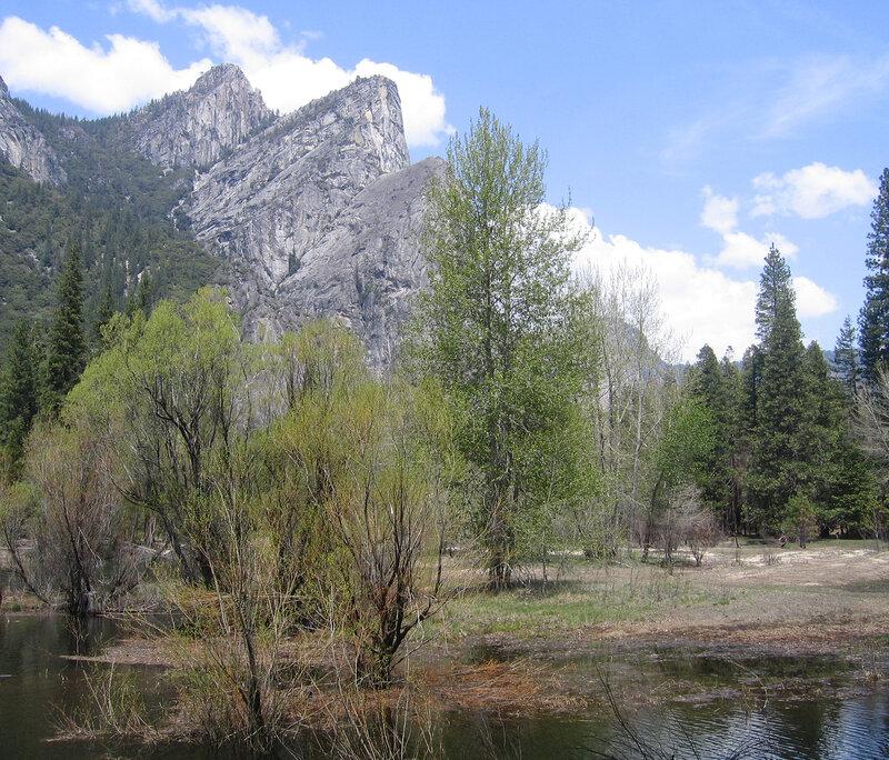 Долина весной