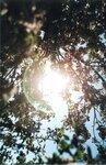 Сонце)))
