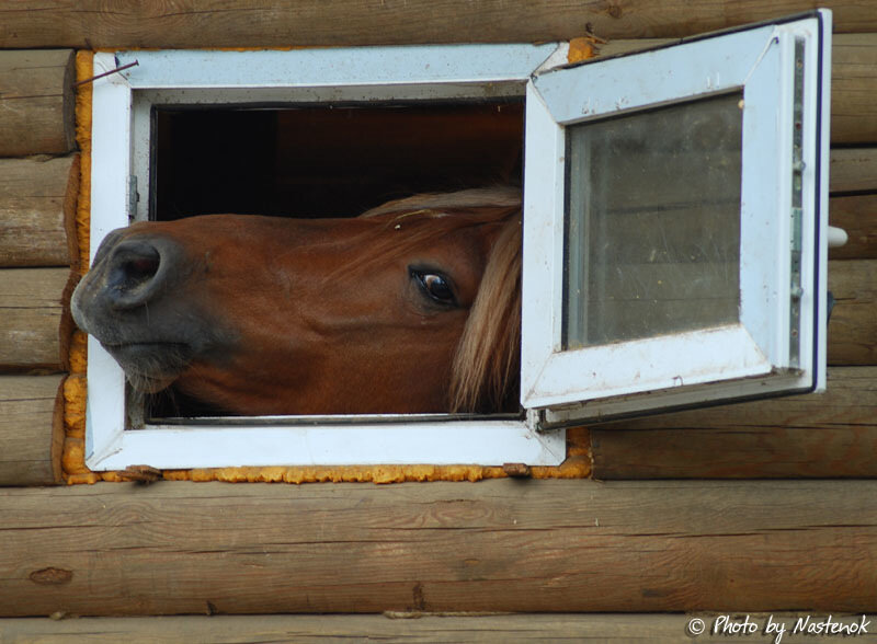 how to install upvc windows gatchina. монтаж окон ПВХ.