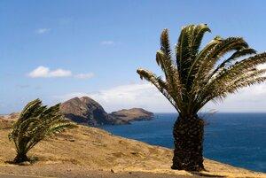 11_Madeira_103.jpg