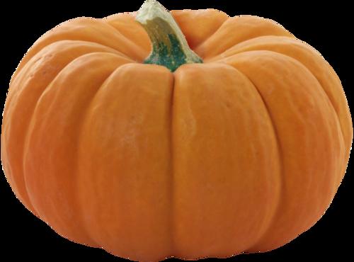 priss_flutteringleaves_pumpkin6.png
