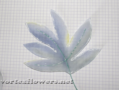 Цветок бабочка Оксалис, или Кислица. Уход в домашних 87