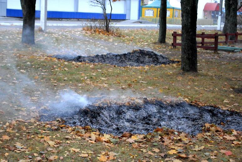 Ямпіль в диму від спалювання опалого листя, фото-3