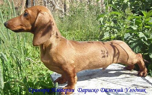 http://img-fotki.yandex.ru/get/5100/arkada-draiv.a8/0_3cf63_bc70ce04_L.jpg