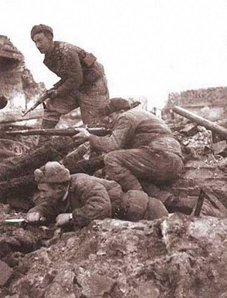 алексей смирнов-военные фото