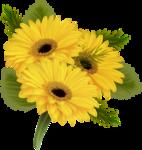 цветы-(250).png