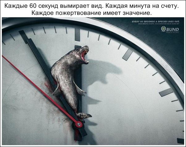 убедительная реклама_17.jpg