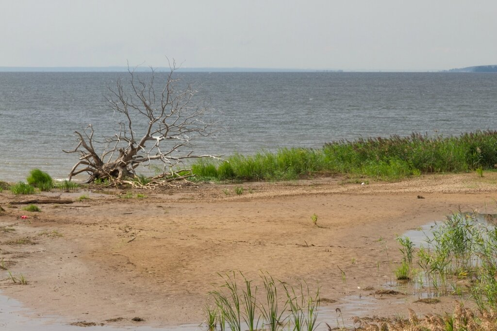 Куйбышевское водохранилище