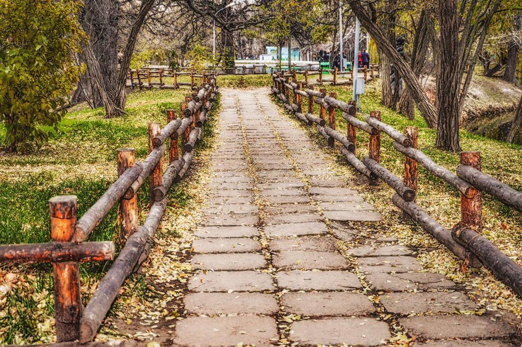 5. «Там, на неведомых дорожках…». Фото, снятое на Nikon D3200 KIT 18-105