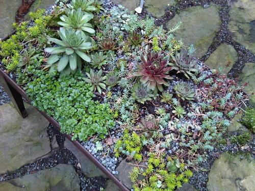 для вашего сада и огорода фото . идеи декорирования сада и огорода идеи декорирования сада и огорода.