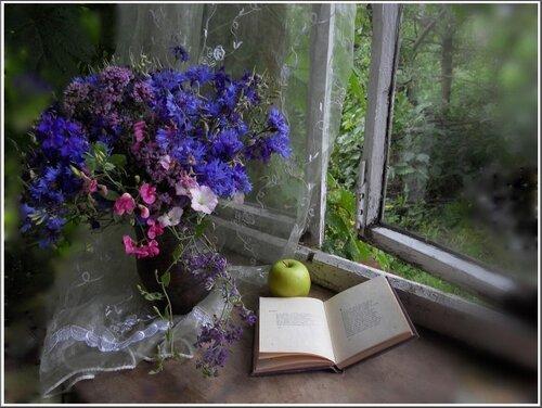Открытое окно и книга